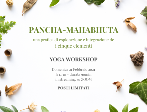 Workshop: i 5 Elementi, Pratica di integrazione e esplorazione